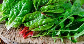 Mangold: Ein leckeres Gemüse mit dem man unheimlich viel machen kann