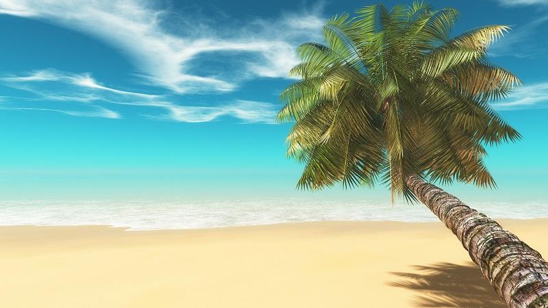 Woher kommt der Kokosblütenzucker? Im Prinzip sagt bereits der Name, dass der Kokosblütenzucker aus den Kokosblüten gewonnen wird. Diese werden geerntet und dann angeschnitten. (#01)
