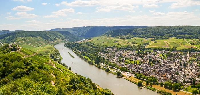 Wein in Mainz: Weingenüsse und Tourismus