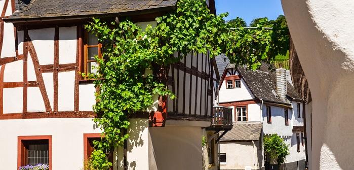 Mainz die Weinhauptstadt Deutschlands.(#01)