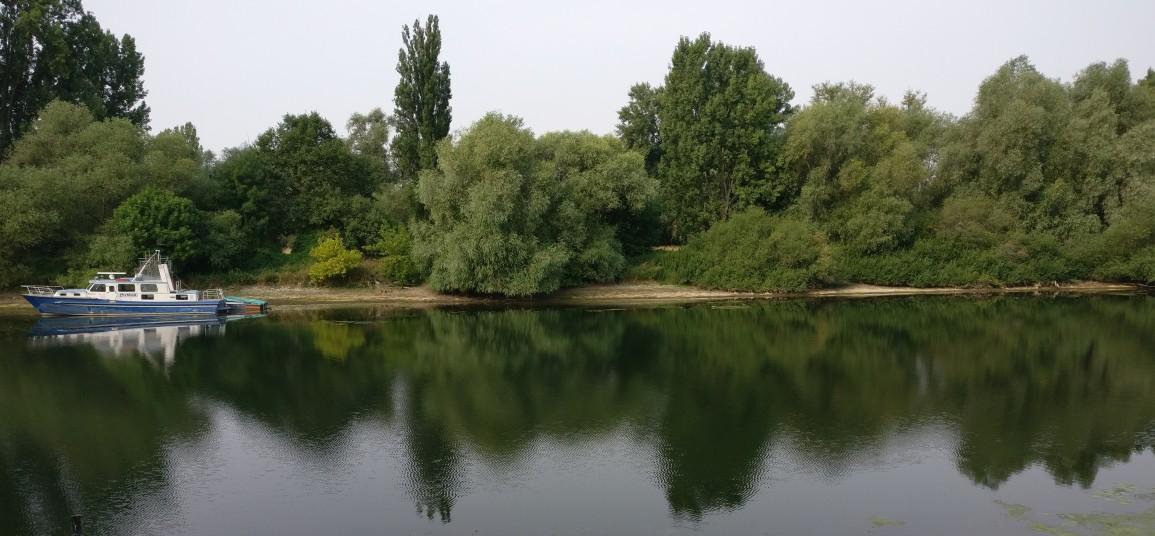 Der Altrheinarm in Ginsheim gibt ein feines Panorama für ein chilliges Frühstück am Sonntag mit Weib ab. Ob wir ein wenig romantisch veranlagt sind? Nö, wieso?