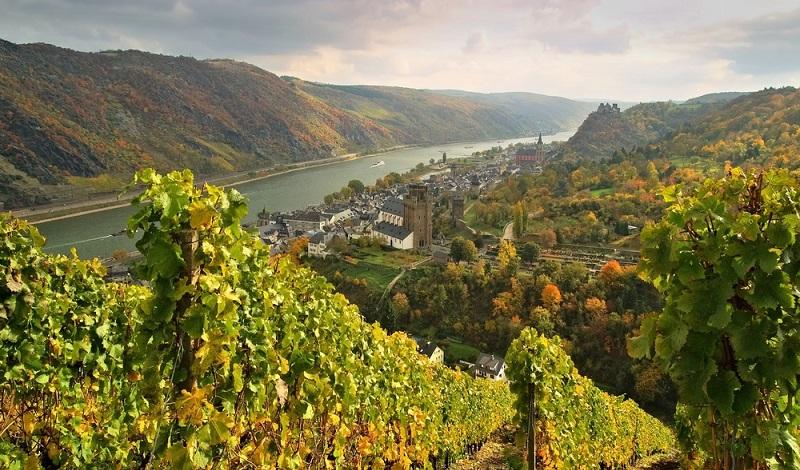 Ganz in der Nähe von Mainz befindet sich das Mittelrheingebiet in bester Weinlage. (#4)