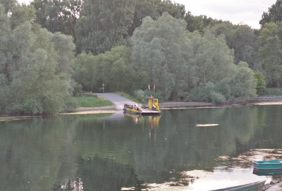 Die Fähre über den Altrhein