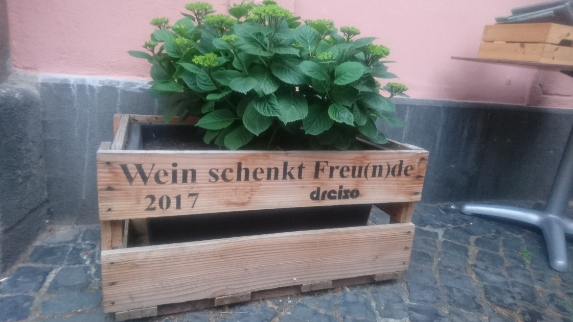 Da sind sich wohl alle einig: Wein schenkt Freu(n)de. Bergschön Mainz.